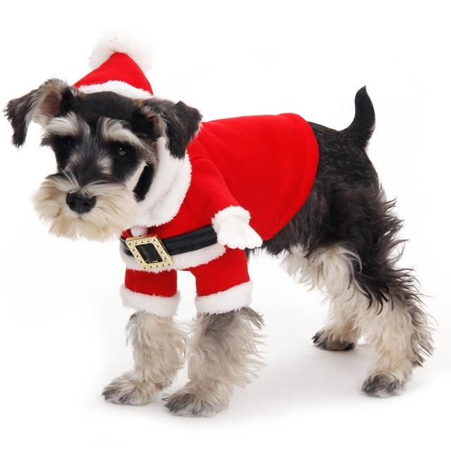 Ropa Para Perros Y Perros En Navidad Perritos Bebes