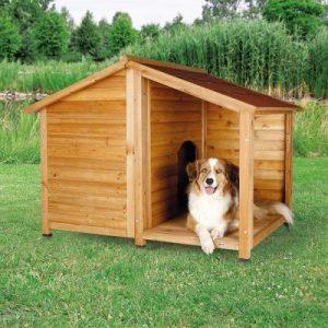Casas para perros Medianos