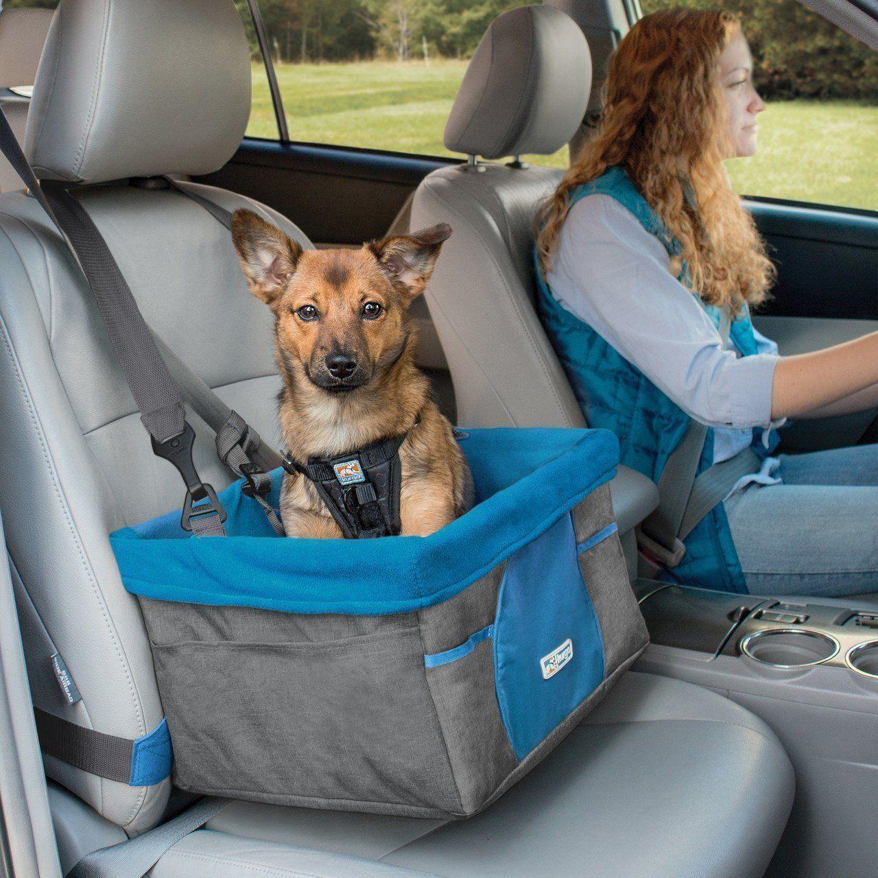 Silla de Auto para Perros: Lleva a tu Mejor Amigo Donde Quieras