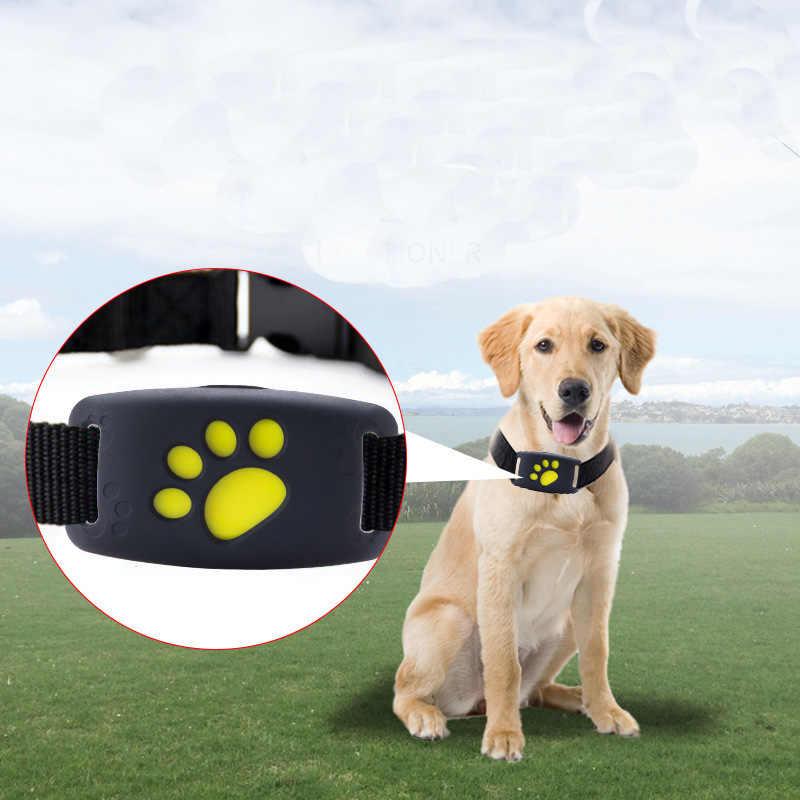 rastreador para perros