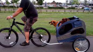 Mejores Remolques para Perros